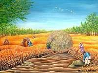 champs d'or - Mabel Baccaro, peintre naïve