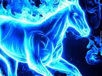 cheval........