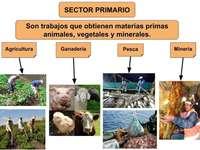 Produção de bens primários