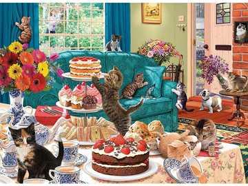 zabawna jazda kotów - zabawna jazda kotów