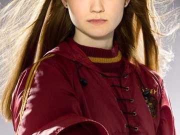 Ginny Ginevra Molly Weasley (Potter) - zbyt elegancka ginny