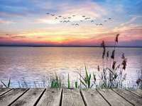 Solnedgång. - Solnedgång vid sjön.