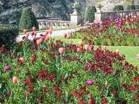 Ogród angielski parkland National Trust
