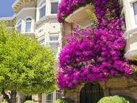 балкони в цветя