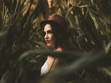 Corn Field Maze - woman in white shirt with hat standing on corn field.