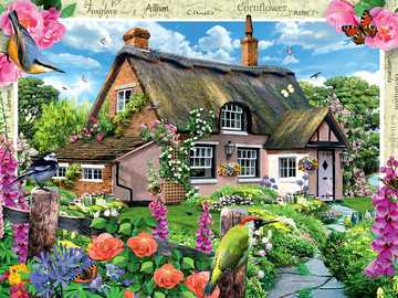 House with garden - House with beautiful flowers
