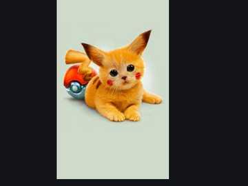 kočička v režimu pikachu - to nejlepší z koťat v Daniele a José 3