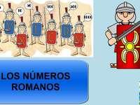 Dianis Roman Numerals