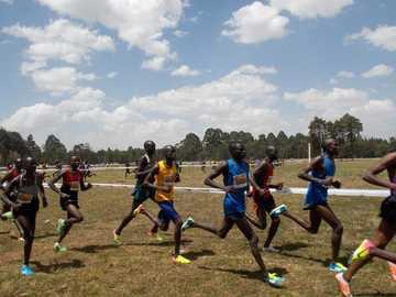 група мъже, бягащи на полето - Бегачи на състезанието Discovery Kenya Cross Country в Елдорет, Кени