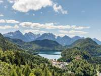 green trees - This is one of the views you can see when you are inside the Neuschwanstein Castle. . Neuschwanstein