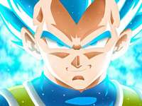 prince vegeta - he is the prince of the saya yin his name is vegeta he is proud and protects the planet as his famil