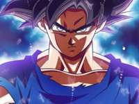 he is goku - he is son goku in his childhood he was a low level warrior but when he grew up he trained and became