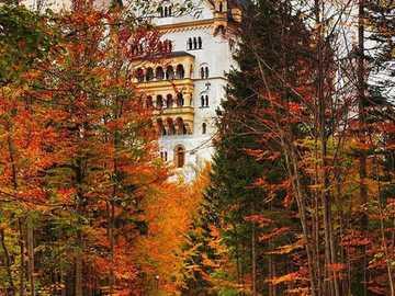 Neuschwanstein Castle, Bavaria, Germany - Neuschwanstein Castle, Bavaria, Germany