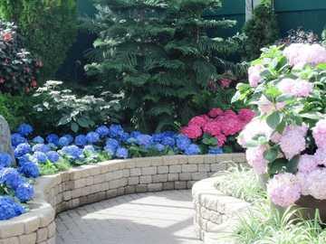 Blumen im Garten - m .....................