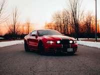 červená bmw m 3 na silnici během dne - Mustang se západem slunce v pozadí.  instagram.com/kyddvisuals. Toronto, ON, Kanada