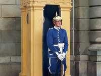 Oslo Royal Palace Guard Norway - Oslo Royal Palace Guard Norway