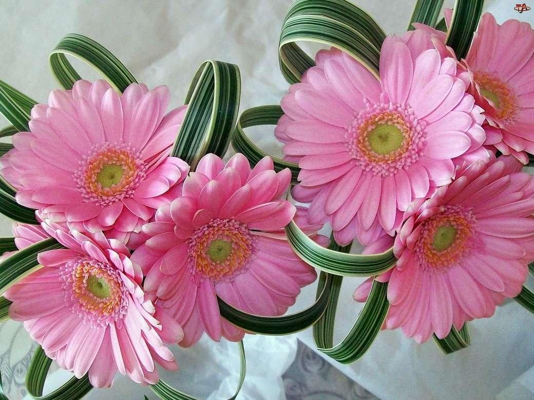 Összetétel, Pink, Gerberas - Összetett. M .................... Rózsaszín gerbera, szépen elrendezve (12×9)