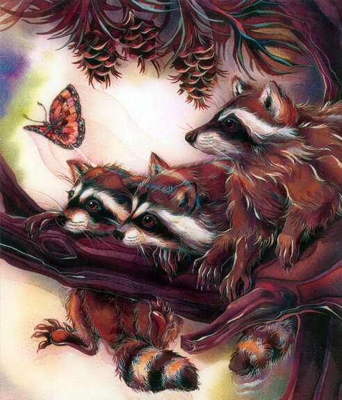 ღ ೋ ღ Raccoons Playful ೋ ღ (7×9)