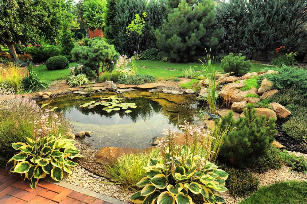 POND IN THE GARDEN - Play Jigsaw Puzzle for free at Puzzle Factory