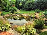 lagoa no jardim