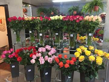 Florist - m .........................