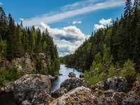 Nemzeti Park Svédország