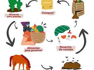 cycle de la matière organique - représentant comment tirer parti des déchets organiques