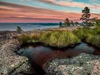 Höga Kusten Skuleskogen Svédország