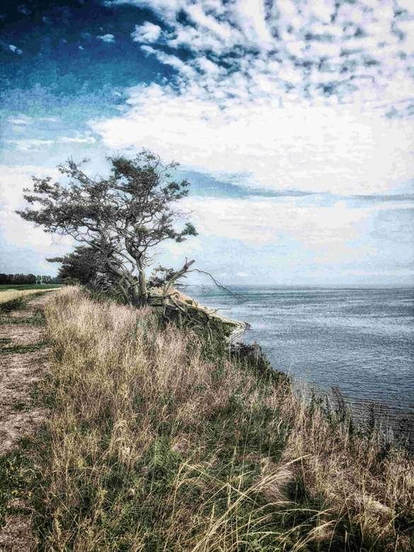 Skane túraútvonal a tenger mellett, Svédország (7×10)