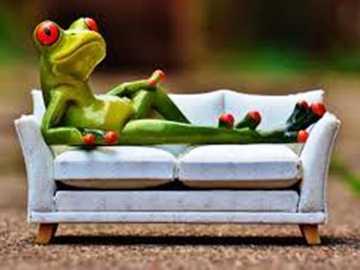 jeszcze wakacje - żabka wypoczywa na kanapie