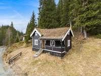 norvegia - una piccola casa di legno ricoperta di muschio - m ........................