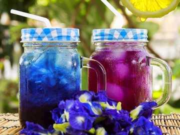 Flor de ervilha borboleta azul, também conhecida como Clitoria Ternatea - m ....................