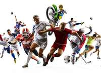 sports disciplines