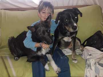 Rompecabeza - Nazareno costa con sus mascotas