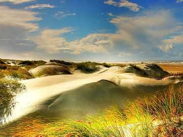 Paysage de dunes Danemark - Paysage de dunes Danemark