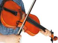 v jak skrzypce