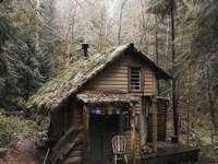 Casa nel bosco - Casa nel bosco come sogniamo
