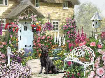 House with garden and dog - House with garden and dog