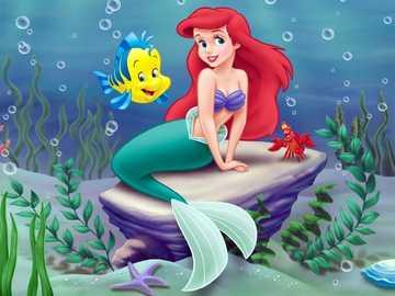 Little Mermaid - Little Mermaid........