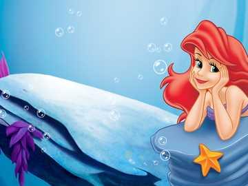 Kleine Meerjungfrau - Kleine Meerjungfrau................