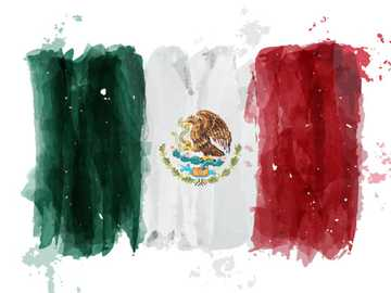 MEXICO PAINTING FLAG - THE FLAG OF MEXICO FOR BOYS AND GIRLS 3 YEARS OLD