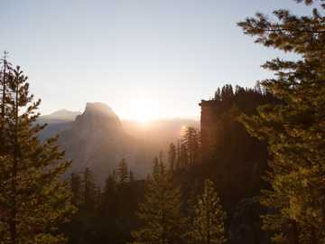 photography of trees - Glacier Point golden hour. Glacier Point, Yosemite Valley, United States