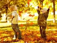 Hojna jesień