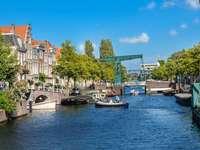 Miasto Leiden w Holandii