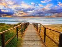 Acces la plajă pe coasta Olandei - Acces la plajă pe coasta Olandei