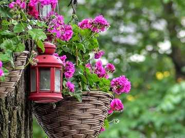 Amsterdam Garten Niederlande - Amsterdam Garten Niederlande