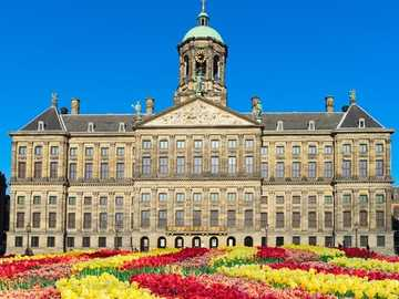 Pałac Królewski w Amsterdamie i tulipany Holandia - Pałac Królewski w Amsterdamie i tulipany Holandia