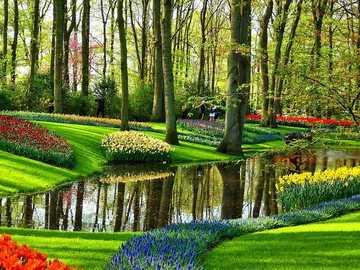 Amsterdam Keukenhof Gartenlandschaft - Amsterdam Keukenhof Gartenlandschaft