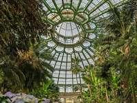 Invernadero Real de Bruselas