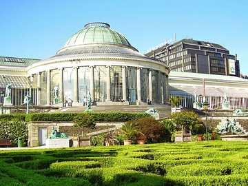 Botaniska museet Bryssel - Botaniska museet Bryssel